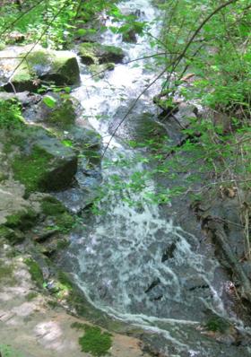 Biasiolli Creek