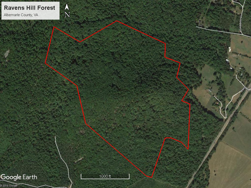 Ravens Hill Forest Boundaries